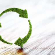 Green, environmentally friendly, clean green cleaning